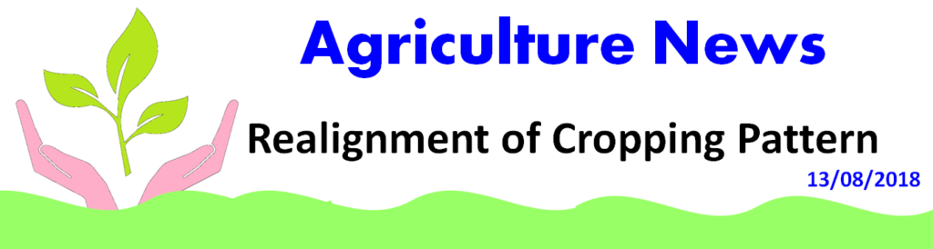Cropping Pattern agro- climatic condition of the region, availability of resources like land & water, market forces, socio-economic condition