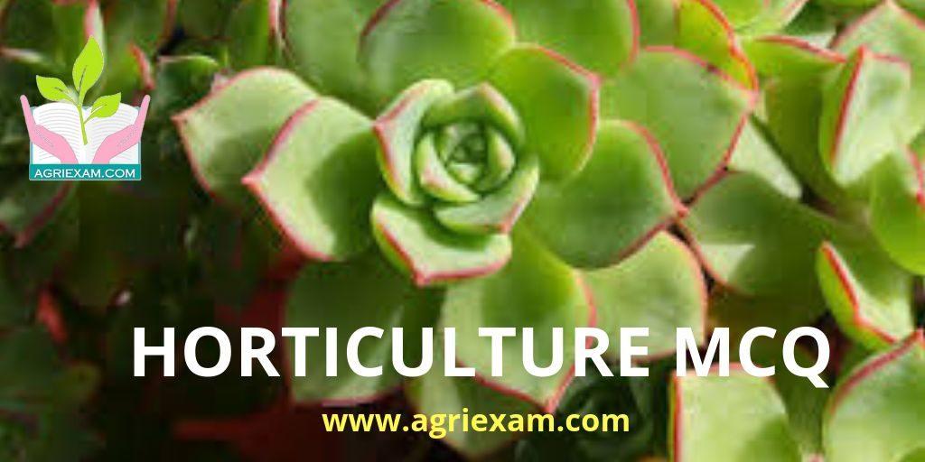 Horticulture Question Answer for Exams Like IBPS- AFO (Agriculture Field Officer) Iffco, Kribhco, NFL, NSC, ICAR-JRF/SRF/ ARS, IARI, TNAU, RAEO, RHEO, ADO, SADO