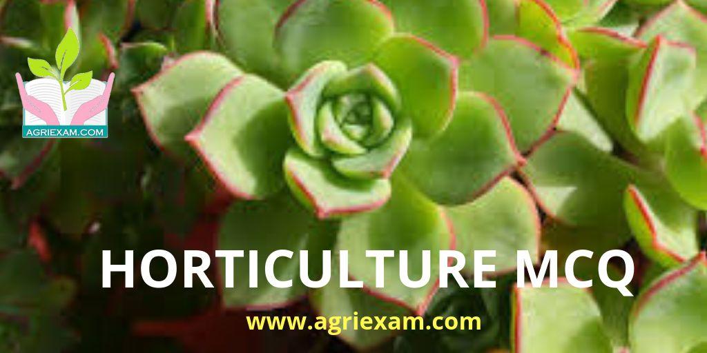 Horticulture Quiz